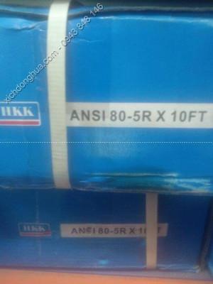 xích ANSI 5 dãy 80 5 medium - Xích Công Nghiệp