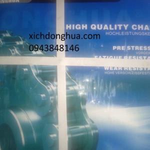 xích donghua 300x300 - Công ty TNHH SX TM DV XNK XÍCH DONGHUA